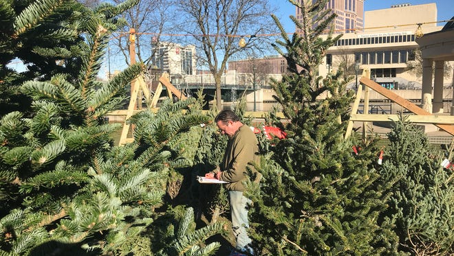 Jim Torrez sets up Christmas trees at a new lot in Pere Marquette Park on N. Old World 3rd St. on Wednesday. It's the first time for a tree lot in the park. The lot is one of three in the area operated by Ideal Property Management, a Lannon-based landscaping company.