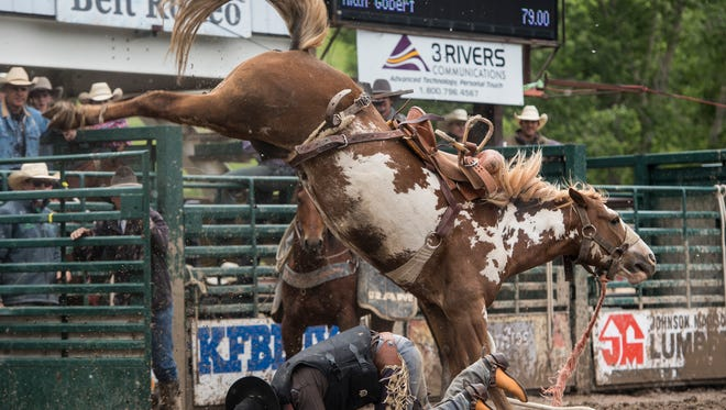 The Belt Rodeo always provides plenty of chills and spills.