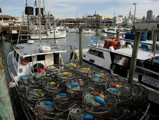 Crabs Toxic Algae