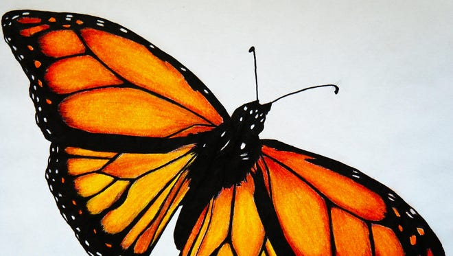 A drawing of a butterfly by Sarah Ninnemann.