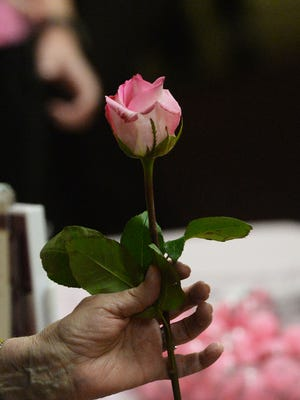 Pink roses are everywhere during October, Breast Cancer Awareness Month.
