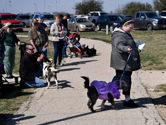 """Brenda Arias leads her 2-year-old poodle mix, Sookie, over to the judge to collect her dog's reward for best purple outfit Saturday. Dog owners dressed up their pets for the annual Krewe of Barkus Mardi Gras parade. """"Last year she won green, this year purple. Our goal is to win gold next year,"""" Arias said."""