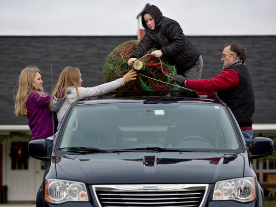 Greg Ball, of Lindenhurst, Ill., fastens a tree to the roof of his van with his children Joshua, 12, Elyse, 14, and Lauren, 19, Saturday, November 28, 2015 at Dunsmore Blue Spruce Christmas Tree Farm in Smith's Creek. The Ball family was visiting grandparents in Fort Gratiot.