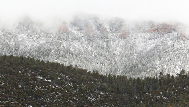 Clouds hang low after dropping snow on the Mogollon Rim near Christopher Creek on State Highway 260 on Tuesday.