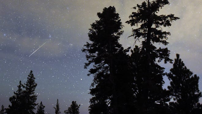 A Perseid meteor streaks across the sky above desert pine trees on Aug. 13, 2015, in the Spring Mountains National Recreation Area, Nevada.