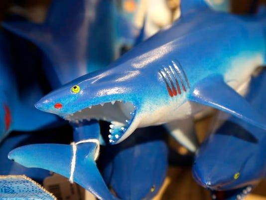 Shark Tourism_Youn.jpg