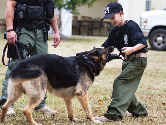 Zachary Boucher, 8, tussles with Kev, a 7-year-old German Shepherd police dog, Tuesday afternoon at the Cape Coral Police Department's K-9 training grounds. Zachary suffers from a debilitating autoimmune disease and his dream is to become a K-9 officer.