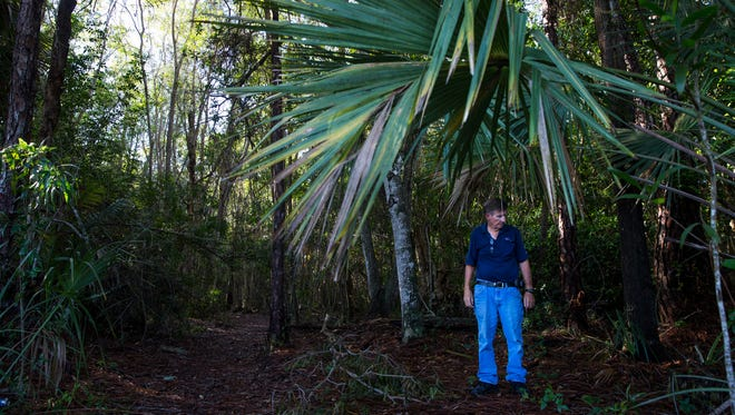 Dan Weeks, the chief inspector for the Collier Mosquito Control District, counts mosquitoes as they land on him at a predetermined counting station in East Naples on Wednesday, May 17, 2017. The counting procedure requires Weeks to stand in the brush at each station for two minutes, letting them swarm for the first minute and then counting them during the second.