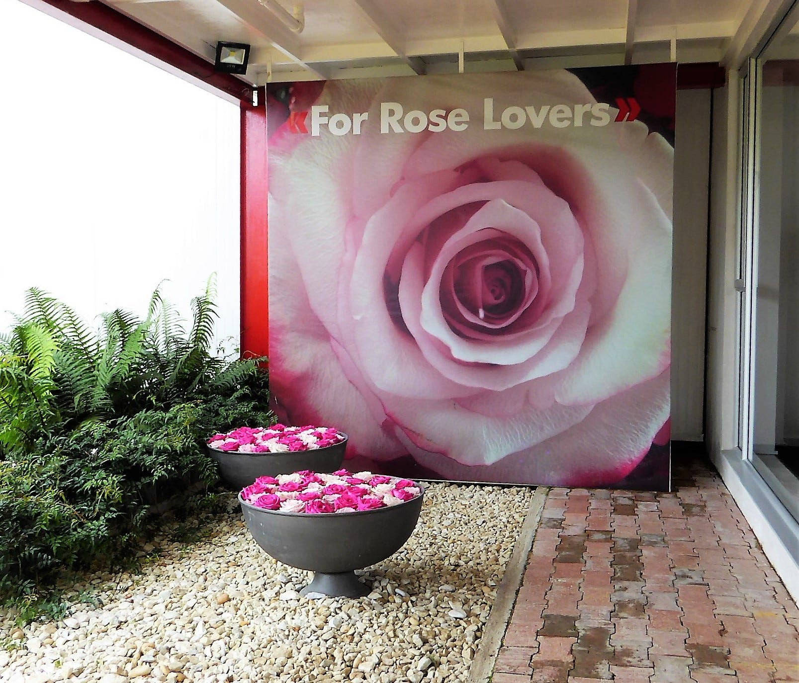 The entryway at Jaroma Roses in Colombia.