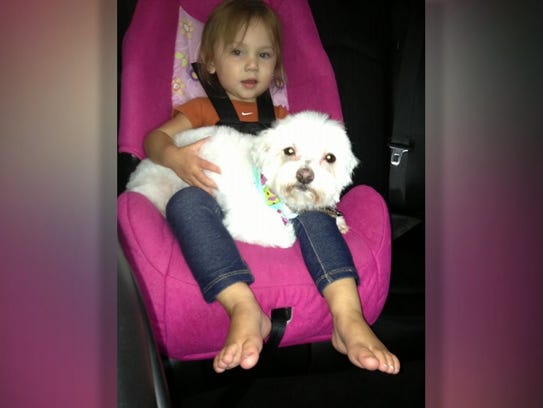 lost dog and girl