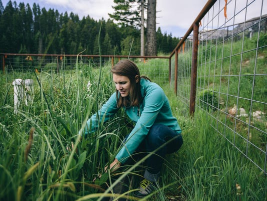 Civil Engineering Graduate Students Work in Wetland Projects