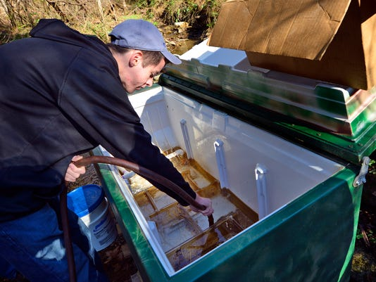 Trout eggs planted in Eagle Scout incubator