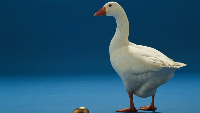Let's hope the Federal Communications Commission doesn't kill the golden Internet goose.