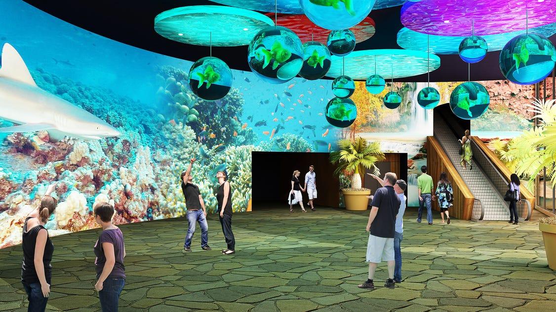 Odysea Aquarium In Scottsdale To Offer Underwater Sea Walk