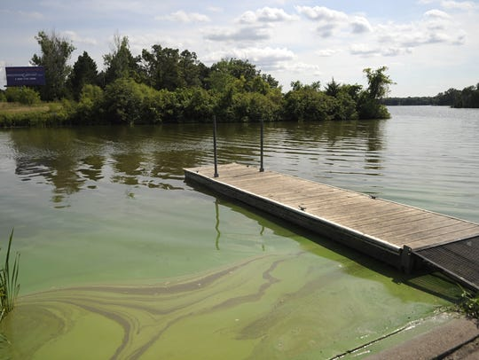 Algae has been causing some problems on Little Rock