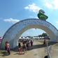 Coroner: No drugs, alcohol in Bonnaroo attendee killed on highway