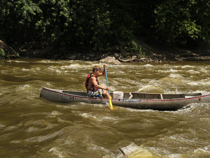 A silver carp jumps out of the river to disturb a canoer, causing him to capsize.