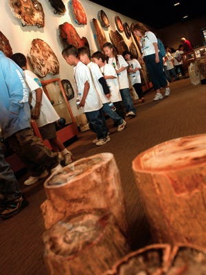 Students from Jornada Elementary School check out giant slabs of petrified wood at the Zuhl Museum at NMSU's Alumni and Visitor's Center. The museum's attractions also include dinosaur bones, minerals and fossils.
