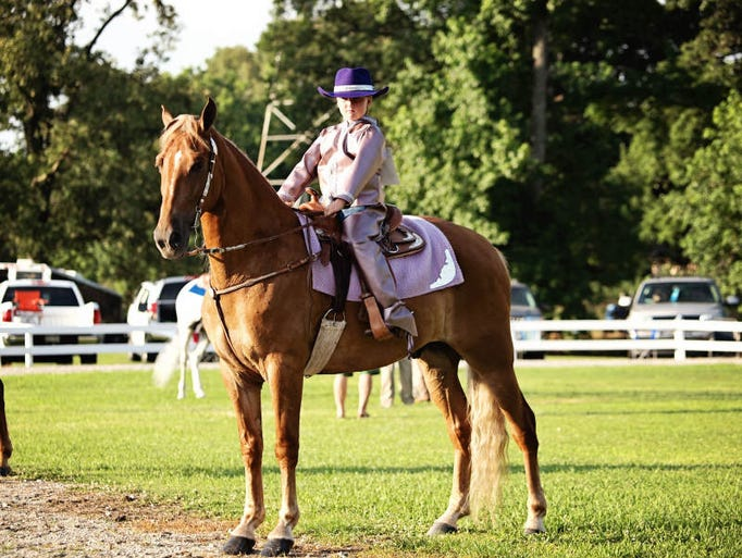 Riders and horses participate in the horse show.