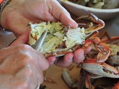 How to pick a crab like a Maryland pro