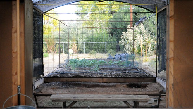 Many chicken coop owners on the Tour de Coops also practice sustainable gardening.