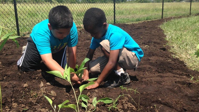 Two children in Head Start's summer preschool program help plant wildflowers as part of a Ball State immersive learning class that is working on a new outdoor area for the children.