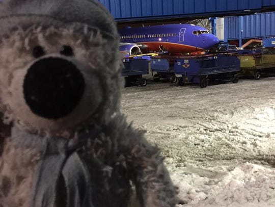 This little guy liked the airport so much, he stuck