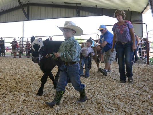 DESBrd_08-04-2016_DMRState_1_C007--2016-08-03-IMG_nw.Fair_bucket_calf__1_1_9