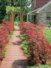 Beautifully landscaped home entrance way