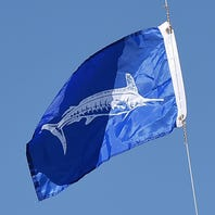 White Marlin Open: Here's what you need to know