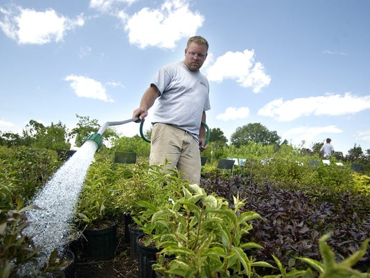 Water plants to prevent drought