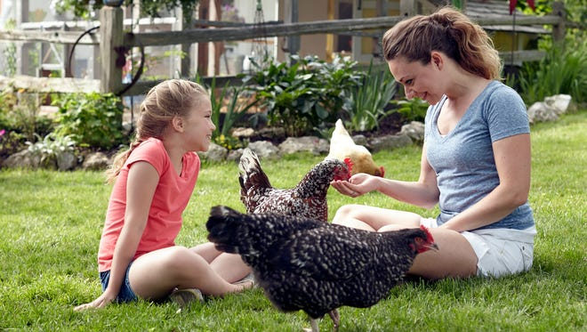 While raising backyard chickens is a fun family activity, teaching children responsibility, biology and the process of food production, the CDC is advising against letting children under 5 handle or touch chicks, ducklings and other live poultry without supervision, warning that children younger than 5 years of age are more likely to get sick from exposure to germs like salmonella.