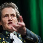 CSU Professor of Animal Sciences Temple Grandin in April. She was awarded a Webby for her November Reddit AMA.