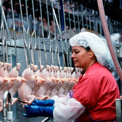 An employee of Tyson Foods processes chicken at a plant