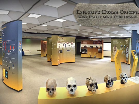 "The ""Origins"" exhibit is displayed at a library in Orlando, Florida."