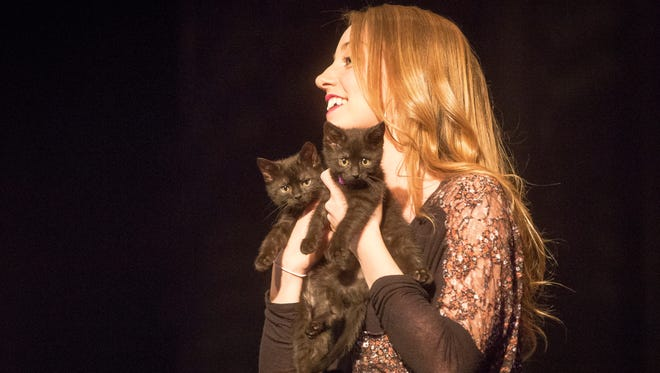 A model in the 2016 Runway for Rescues show accessorizes with two kittens.