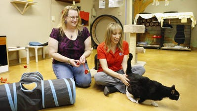 Attorney Lisa Kiser (left) and Jodi Polanski, executive director of Lost Our Home Pet Rescue, play with Doodle Bug in Tempe. Kiser recently drafted a trust that helped secure care for a deceased woman's animals.
