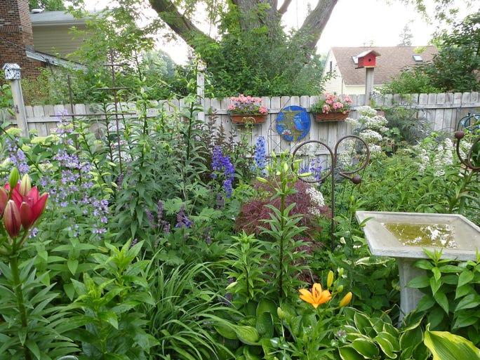 Kavelaris Garden