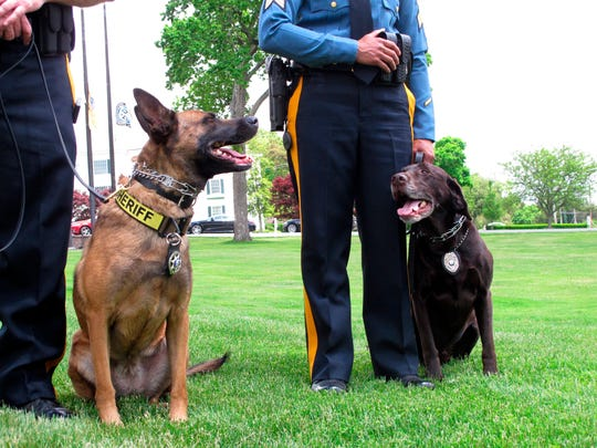 Luna, a drug-sniffing dog, left, and Hemi, an explosives-sniffing