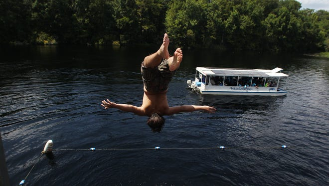 Diving off the observation deck at Wakulla Springs State Park. The state is set to spend money to improve water quality at the spring.