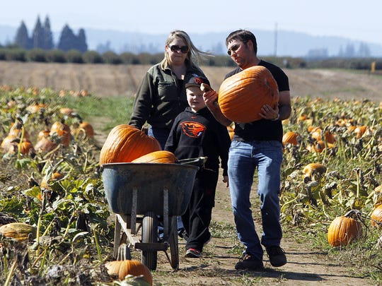 Pumpkins aren't the only thing you can find at Vince Woods Farm, 6435 62nd Ave. NE. It also features ornamental corn, straw, cornstalks, corn maze, Pumpkin Forest and Caboose.