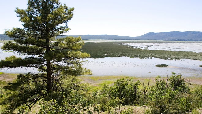 Mormon Lake's size depends on the amount of snow that fell the winter before.