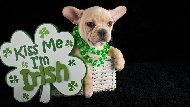 How Irish are you, really?