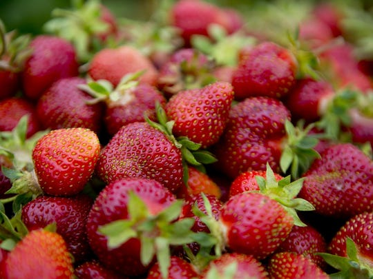 WRT Strawberries 03