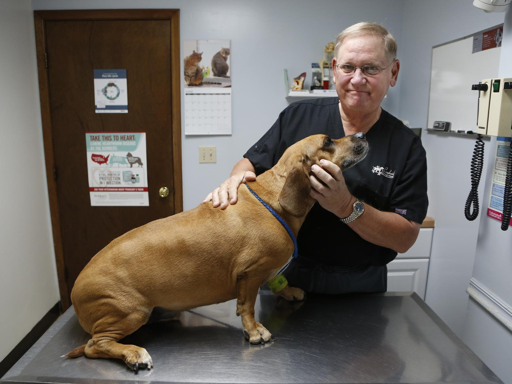 Veterinarian Todd Clark visit with Digby, a seven-year-old Basset mix, Monday, June 22, 2015, at Creekside Animal Hospital, 2840 Schuyler Avenue in Lafayette. The dog had its teeth cleaned earlier in the morning. Clark is retiring as a high school football referee after 41 years.