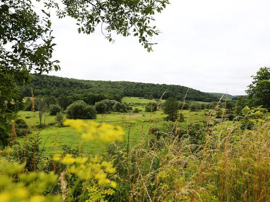 A portion of land in the Town of Barton, near Tyler Hollow Road, sits near the site of the proposed natural gas well. The gas collection will take place beneath a 53-acre plot owned by Ernest Snyder. Proponents say only 3.5 surface acres will be disrupted while the well is drilled. But propane fracking in Tioga County faces long odds.
