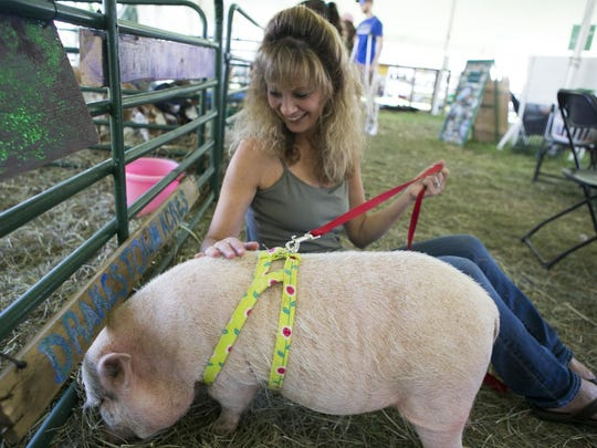 Jennifer LaPeruta of Mendham makes friends with Harley, a 2-year-old mini pot-bellied pig. The Morris County 4-H Fair is a chance to showcase and celebrate the many achievements of Morris County 4-H members. This wholesome family event includes live music, food, rides, science exhibits, club activities, hay rides, and plenty of animals, including bunnies, goats, chickens, horses and pigs. The event is held through Sunday at Chubb Park, Chester, NJ. Saturday, July 23, 2016.