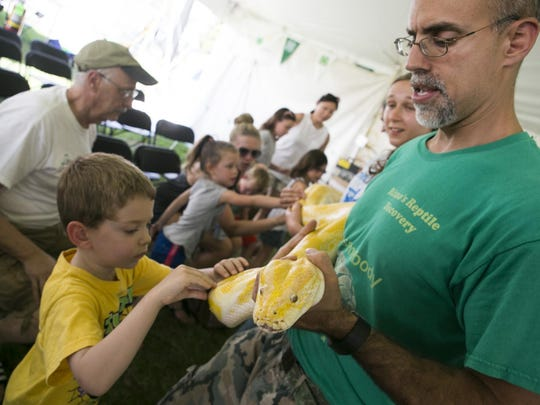 Members of the audience touch an albino python held by Dominic Rizzo, owner of Rizzo's Reptiles in Flanders. The Morris County 4-H Fair is held through Sunday at Chubb Park, Chester, NJ. Saturday, July 23, 2016.