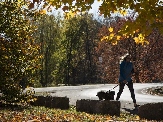 Melissa Allsup walks her pit bull, mastiff mix Miller Tuesday afternoon at Cherokee Park. November 3, 2015.
