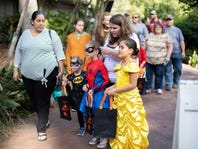 Trick or Treat early with these Halloween events